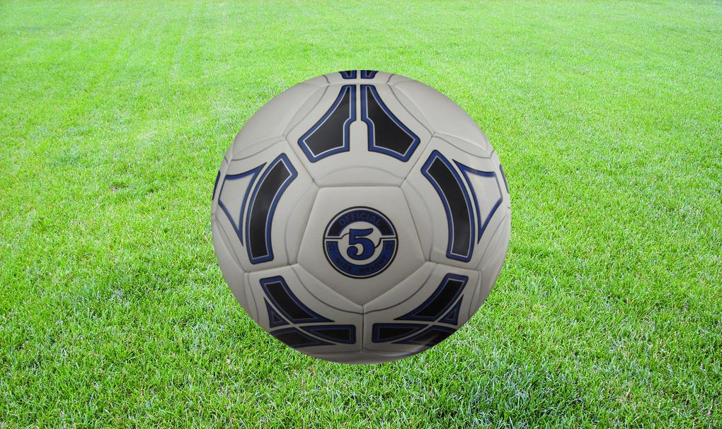 无锡日升体育,足球训练营客户不变的选择