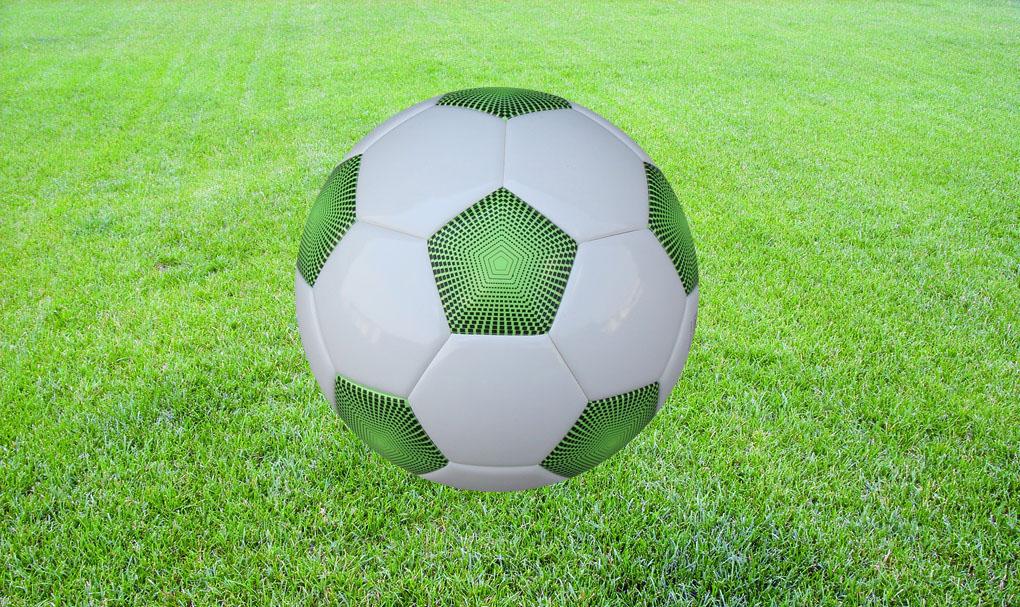 足球训练营批发足球,日升体育足球的价格实在